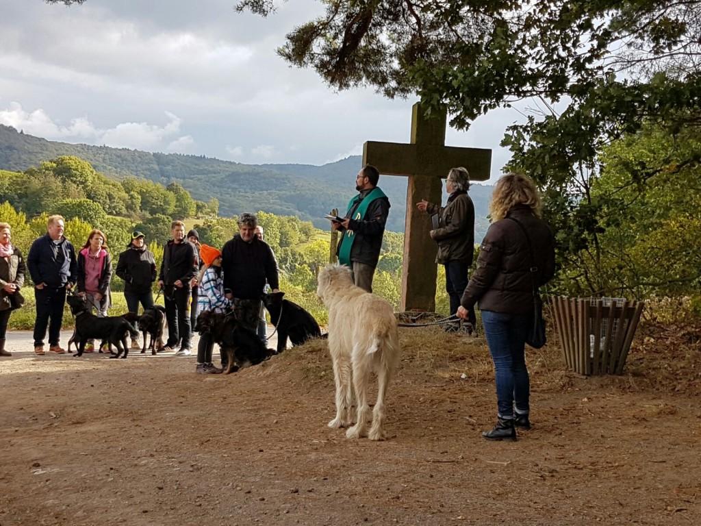 Hundesegnung am Schönberger Kreuz