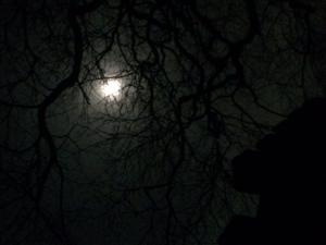 Nachtwallfahrt-Mond